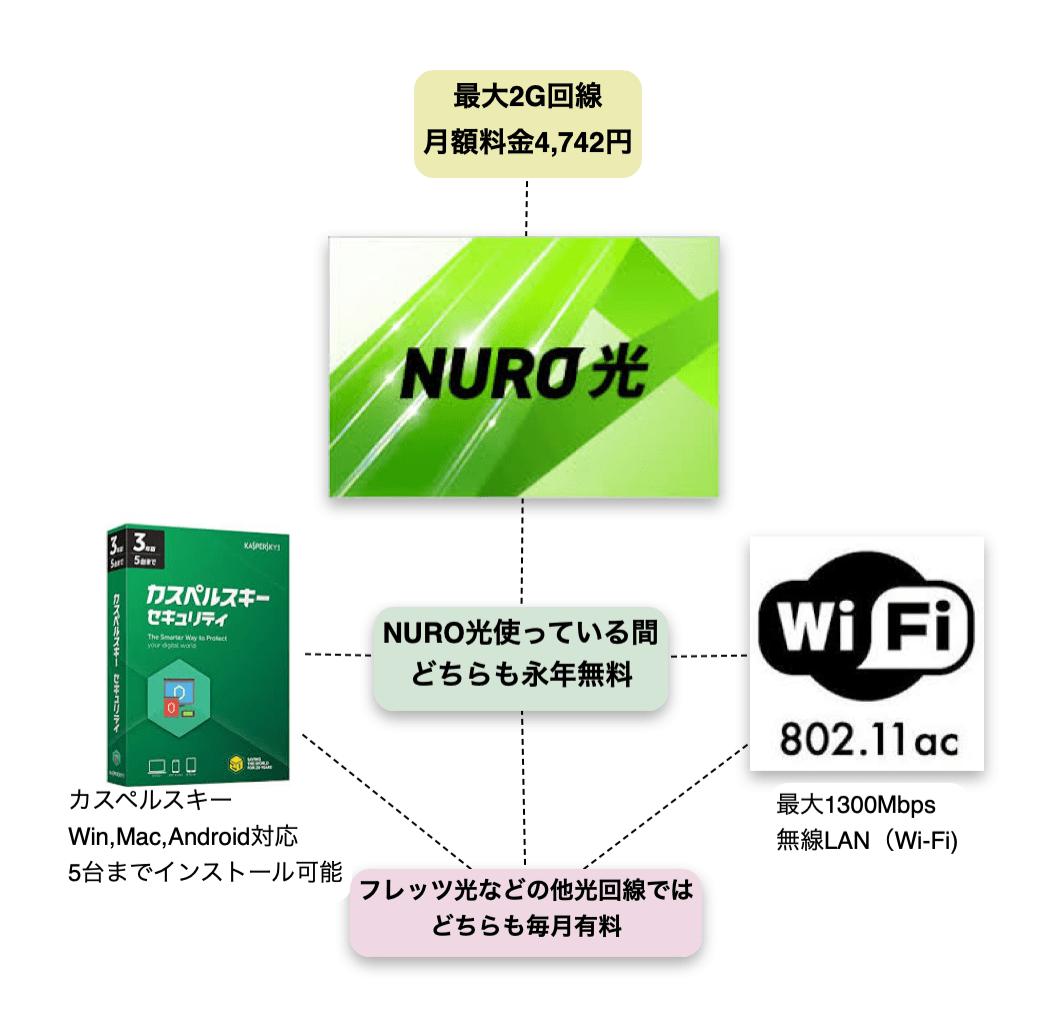 NURO光はオプションが永年無料